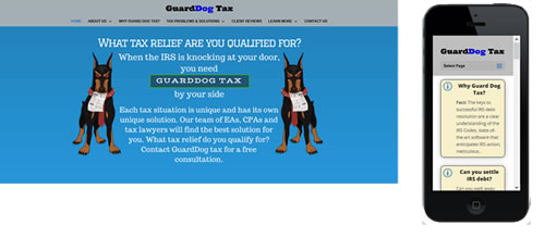 Guarddog Tax IRS Consulting services